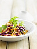 Noodle, red cabbage, beansprout and carrot Thai salad