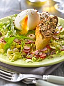 Crisp vegetable salad with a soft-boiled egg,toast with anchoyade