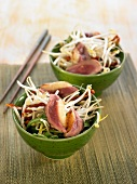 Beansprout, rocket lettuce, duck magret and sun-dried tomato salad