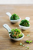 Tartare balls with herbs