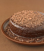 Light spong cake with chocolate frosting