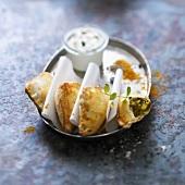 Indian-style potato and curry Samossas