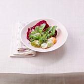 Salat mit rohen Jakobsmuscheln