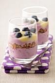 Cereal and blueberry Tiramisu