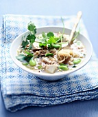 Soba noodle broth with tofu,broad beans and sesame seeds