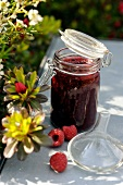 Raspberry and grapefruit oil jam