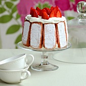 Strawberry and pink biscuit Charlotte