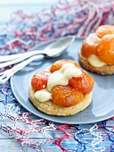 Pan-fried apricots and yoghurt mousse shortbread tartlets