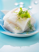 Raw halibut fillets