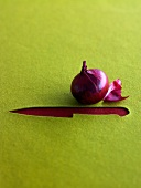 Red onion and the shape of a knife cut out in felt