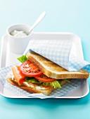 Salmon toasted sandwich