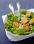 Fried quenelle salad