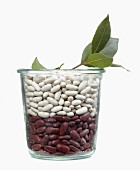 Jar of white and red beans