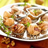 Snails stuffed with diced bacon and walnuts