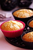 Almond cakes in muffin cases