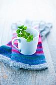 4 leafed clover