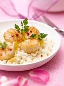 Scallop and Champagne risotto