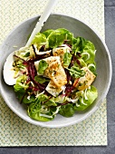 Halibut and green and red cabbage salad