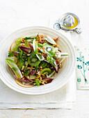 Chicory,kiwi,shrimp,apple and hazelnut salad