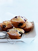 Small bilberry cakes