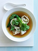 Pak-choi broth with vegetable dumplings