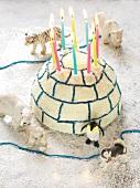 Igloo-shaped birthday cake