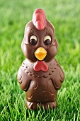 Small chocolate cock
