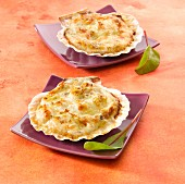 Scallops in bechamel sauce served in their shells