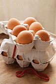Two boxes of 6 eggs