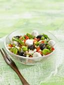 Broad bean, tomato, small mozzarella ball and black olive salad