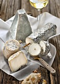 Selection of goat's cheeses