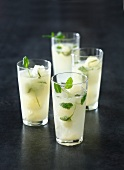 Mojito ice cube drinks
