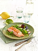 Piece of grilled salmon and mixed salad with orange zests