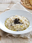 Risotto with thinly sliced black truffles and olive oil from Nyons