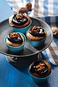 Walnut cupcakes with chocolate frosting