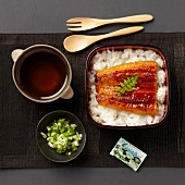 Steamed and glazed eel and sticky rice bento