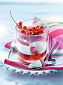 Vanilla-flavored panna cotta with redcurrant jelly