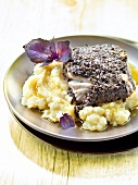 Piece of cod in black olive crust, celeriac mash with olive oil