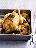 Roasted chicken with sage, roasted potatoes and garlic