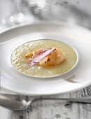 Creamed parsnip soup with scallops