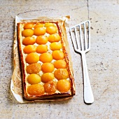 Rectangual apricot pie