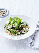 Spaghettis with spinach, mozzarella di bufala,pine nuts and squash seeds