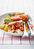 Two-colored cherry tomato,bread,parmesan and basil salad