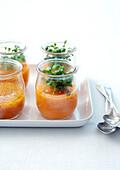 Möhren-Gazpacho mit Daikonkresse