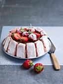 Rhubarb-strawberry Charlotte