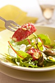 Baby beetroot leaves, caper and pine nut salad, raw beef and cream cheese cannellonis