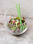 Fancy salad in a large transparent bowl
