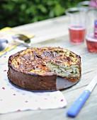 Zucchini-goat's cheese pie