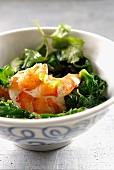 Shrimps with spinach and cilantro