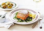 Salmon fillet with baked potatoes